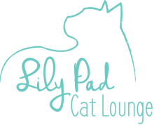 Lily Pad Cat Lounge